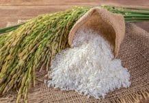 Pirinç Büyüsü